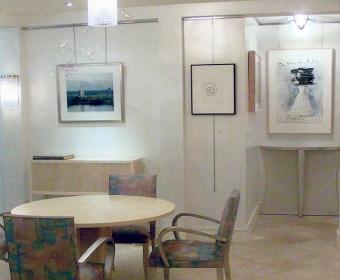 Art-Collectors-Gail-Green-23